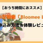 【おうち時間におススメ】お花の定期便「bloomee(ブルーミー)」のお申込み方法&体験レビュー